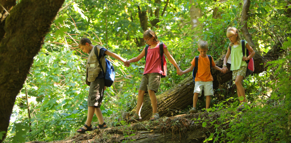 Kids enjoying time in nature at a faith based summer camp in the flathead valley