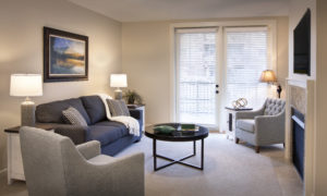 cozy living room for an independent senior adult
